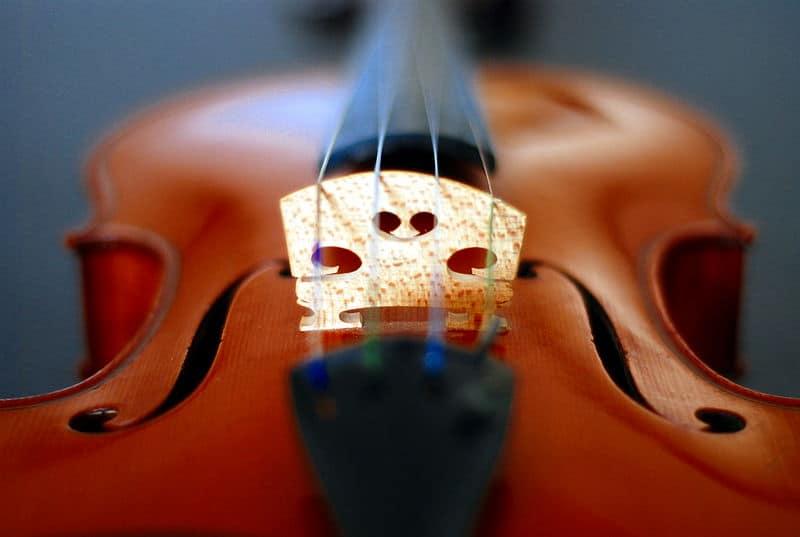800px-Violin_bridge_fholes